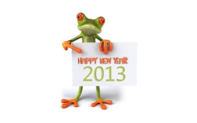 Funny New Year Wallpaper 2013