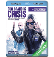 EXPERTA EN CRISIS (2015) FULL 1080P HD MKV ESPAÑOL LATINO