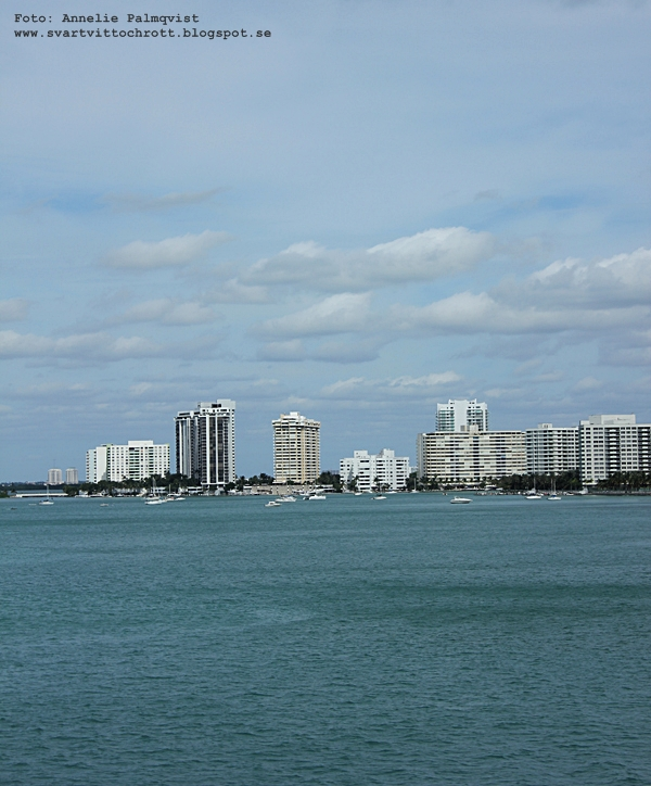 skyline florida