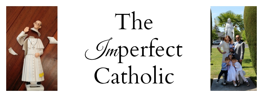 The Imperfect Catholic