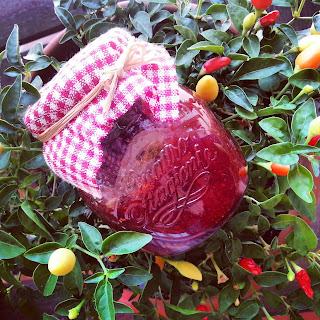 marmellata di peperoncini al sagrantino