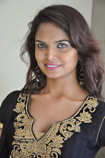 Actress-Aasha-Photos-at-Freedom-from-Corruption-Press-Meet