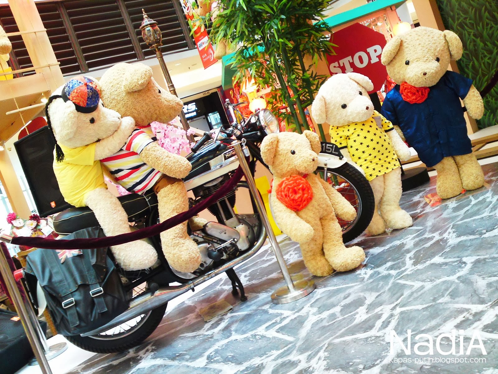 Bear ride a bike