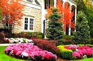 Front yard landscape garden design flower bed.