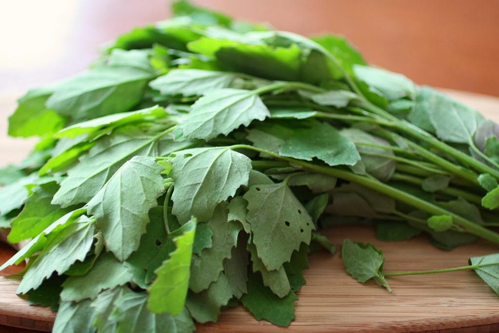 Image result for Variety of Saag