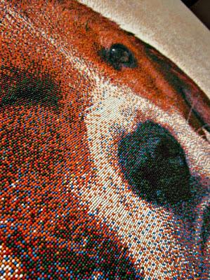 صورة جميلة لكلب الصيد مصنوعة من الحلوى-منتهى