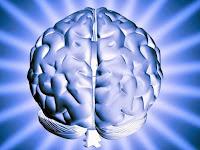 How Memory Works | Alzheimer's Reading Room
