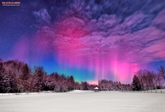 FOTO: Aurora Ungu di Langit Amerika Serikat