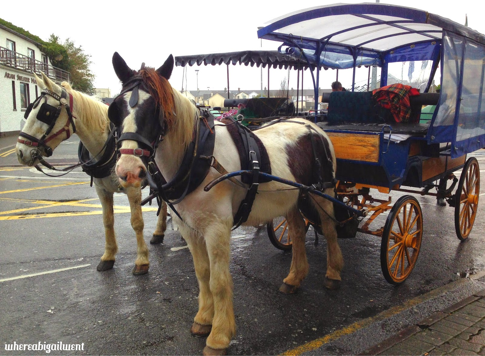 Jaunting Cars Killarney