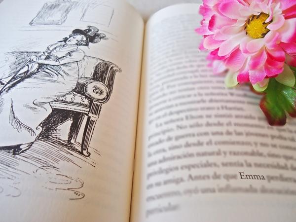 Livro Emma ilustração flor