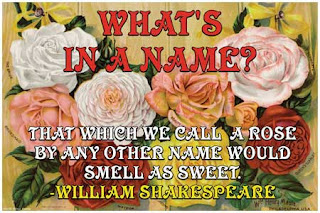 Shakespeare - Whats in a name