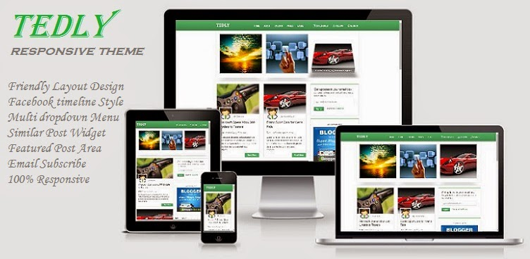 Tedly Responsive Theme