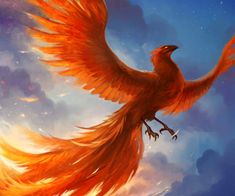 Phoenix The Immortal A Universal Sacred Spirit Most