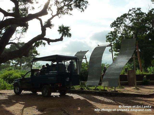 parc national de Yala au Sri Lanka le leopard