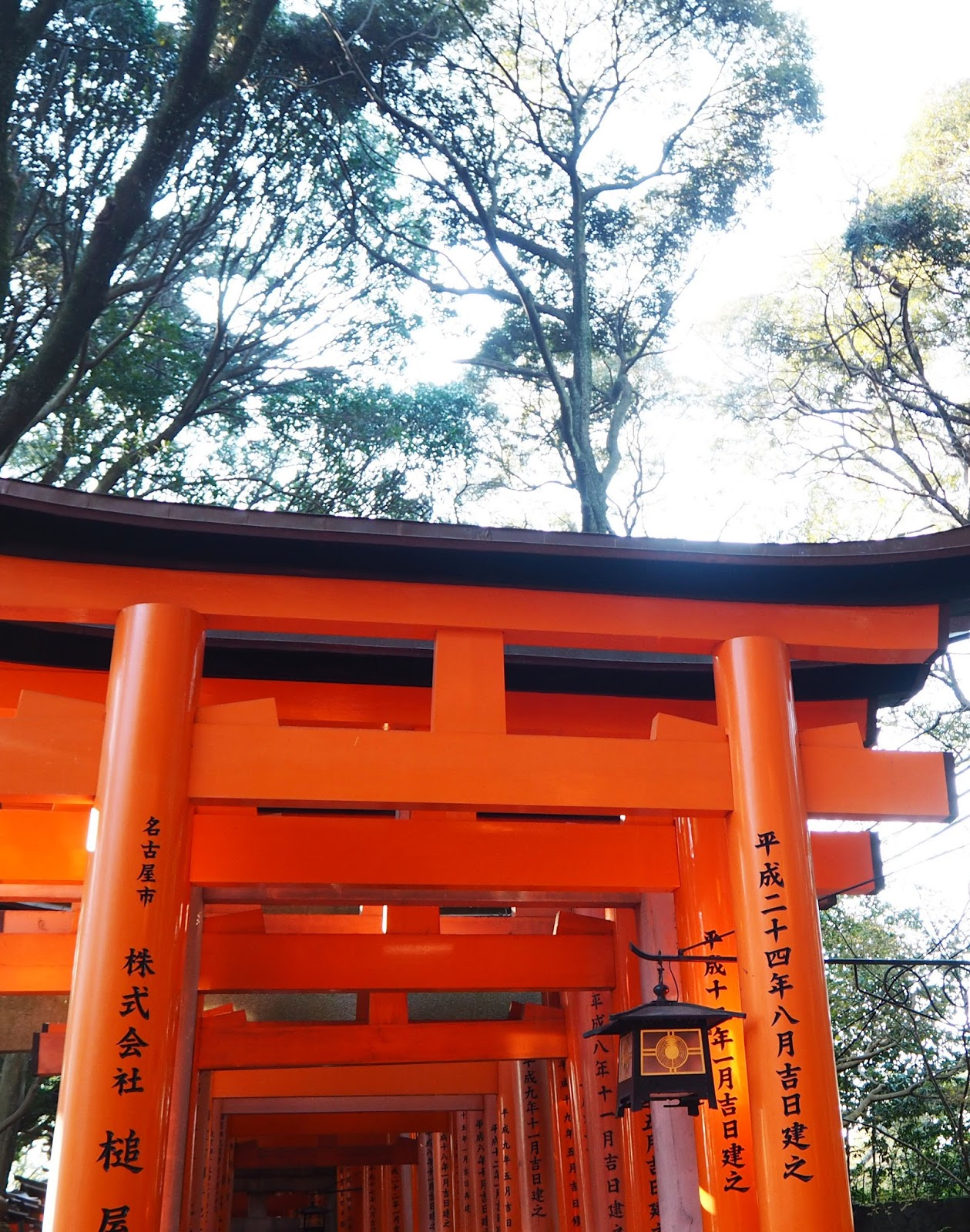 Fushimi Inari Taisha Shrine,