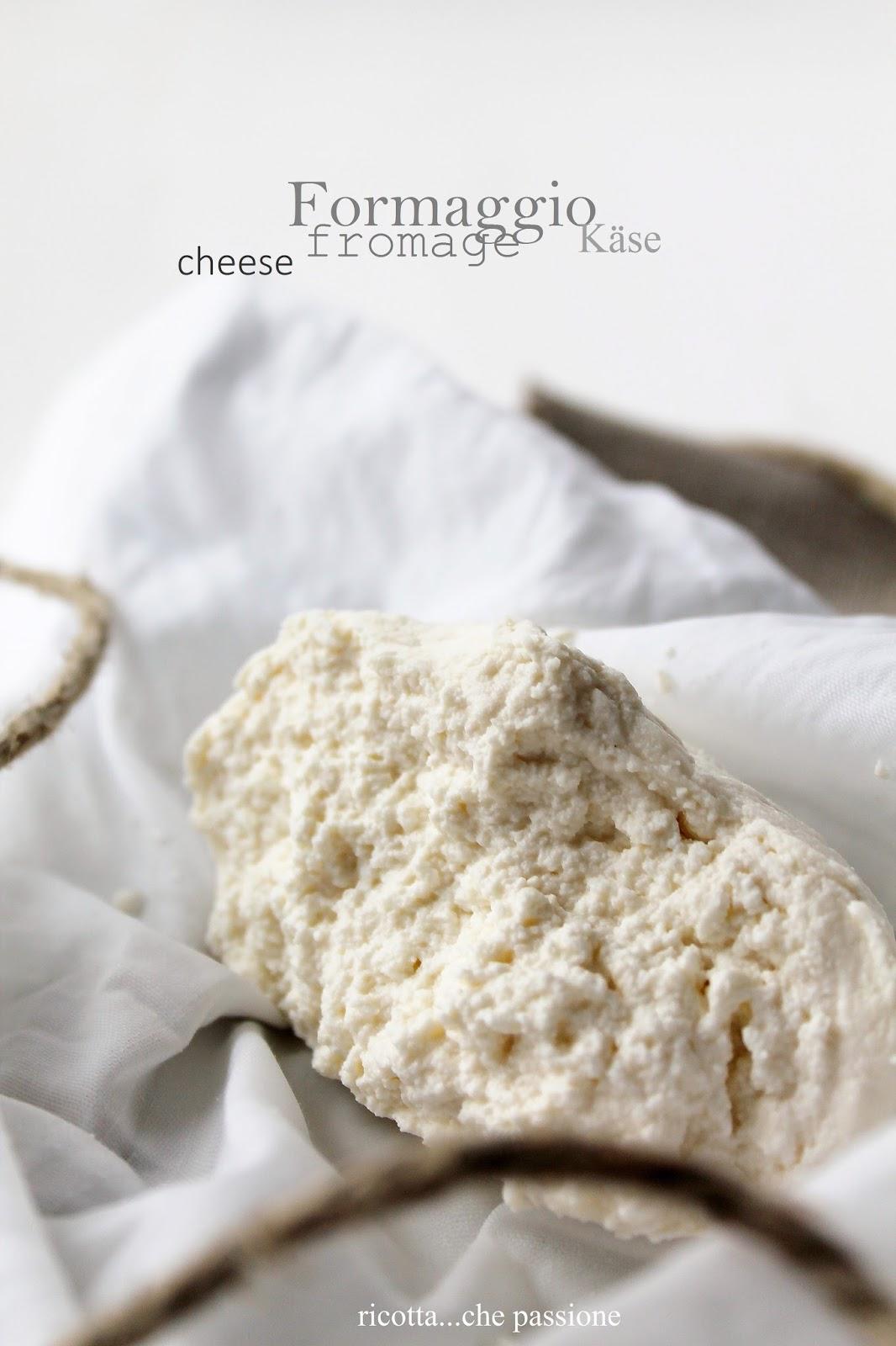 formaggio fatto in casa anche senza termometro. che soddisfazione!!!