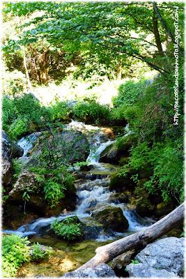 Nacimiento río Mundo
