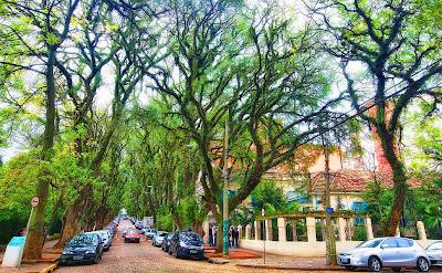 rua mais bonita do mundo poa porto alegre rs brasil