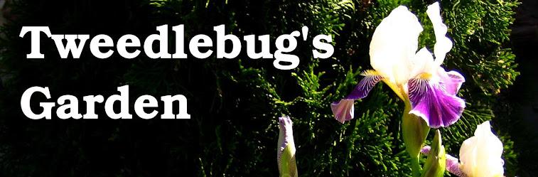Tweedlebug's Garden