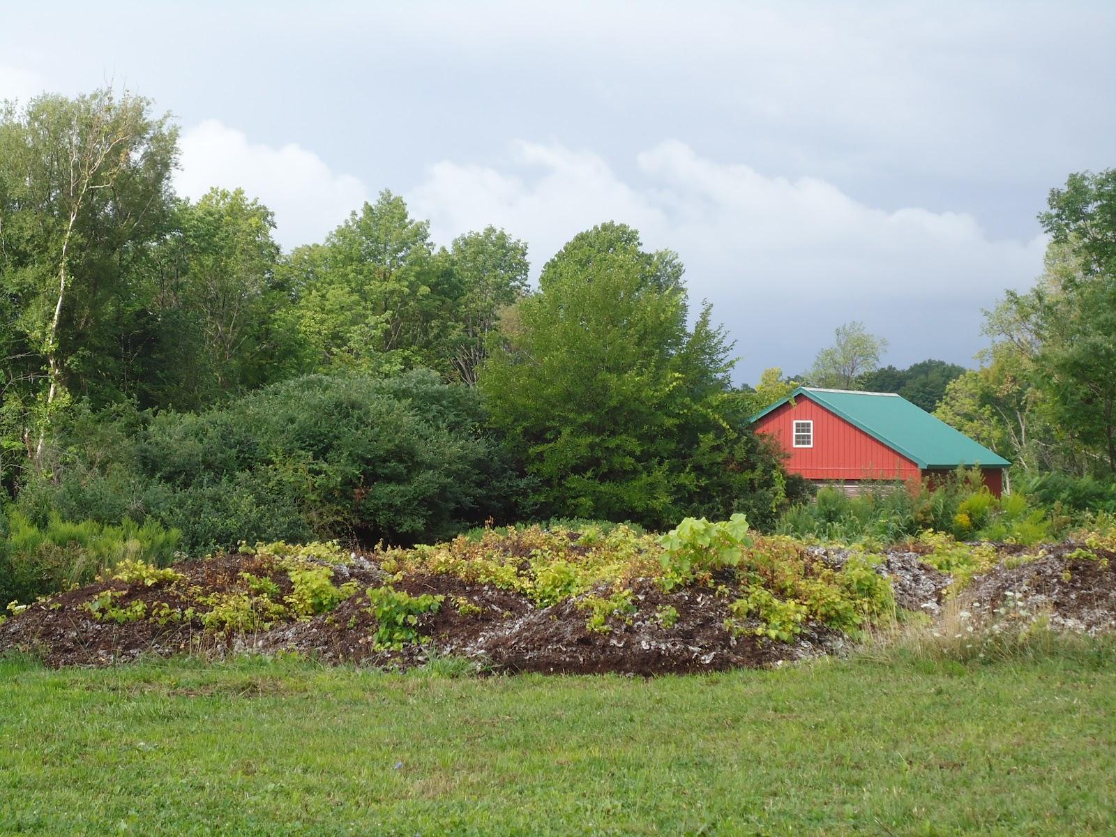 Johnson Estate Winery compost pile