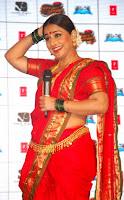 vidya balan hot saree images