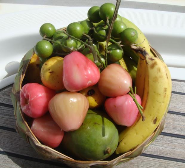 Corazon Fruit Puerto Rico Vtwctr