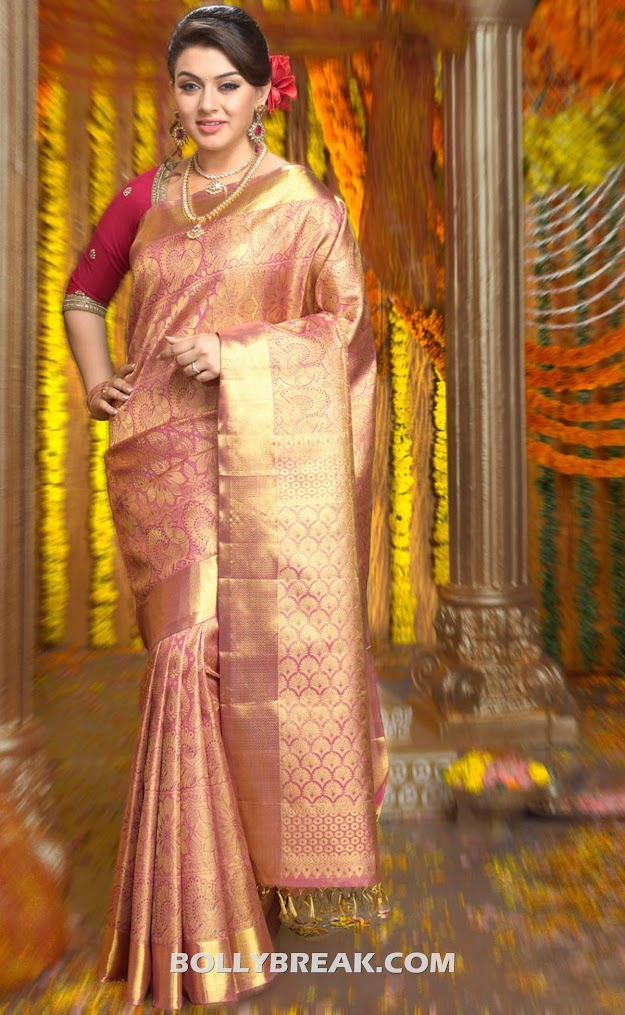 Hansika motwani in the Ad for The Chennai Silk sari