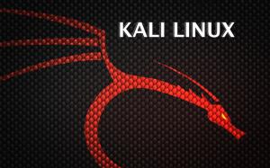 Kali - Linux instalandolo en máquina virtual