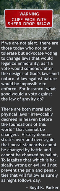 "If we are not alert, there are those today who not only tolerate but advocate voting to change laws that would legalize immorality, as if a vote would somehow alter the designs of God's laws and nature. A law against nature would be impossible to enforce. For instance, what good would a vote against the law of gravity do? There are both moral and physical laws ""irrevocably decreed in heaven before the foundations of this world"" that cannot be changed.  History demonstrates over and over again that moral standards cannot be changed by battle and cannot be changed by ballot. To legalize that which is basically wrong or evil will not prevent the pain and penalties that will follow as surely as night follows day. - Boyd K. Packer"