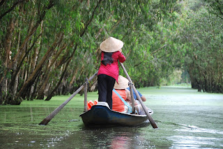 Tra Su Cajuput Forest, Chau Doc, An Giang