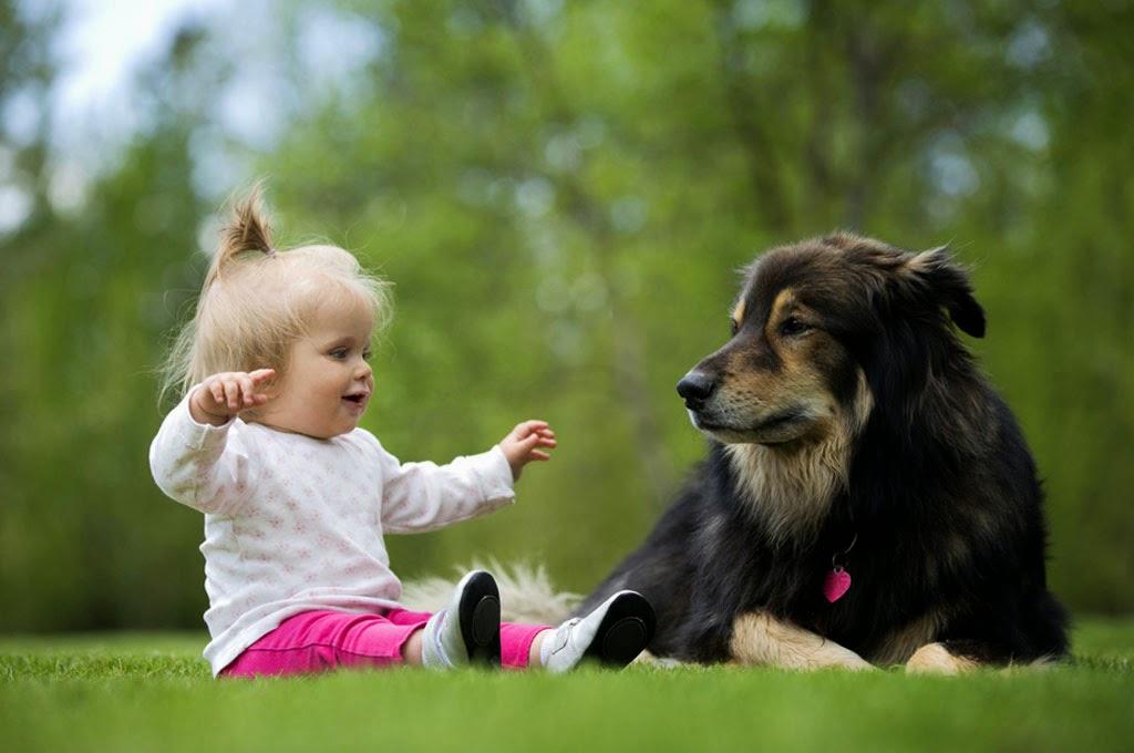 bayi-lucu-bermain-dengan-anjingnya