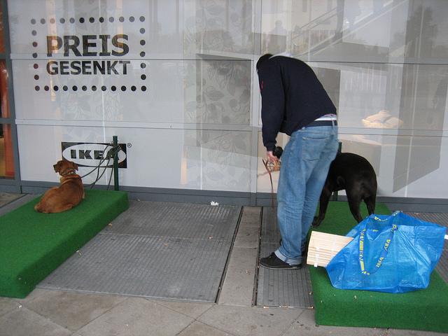 Ikea tem estacionamento para cachorros