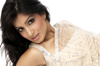 pallavi-sharda in saree and photography looking beautiful