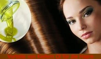 Vorteile von Kiefern Öl für die Haare
