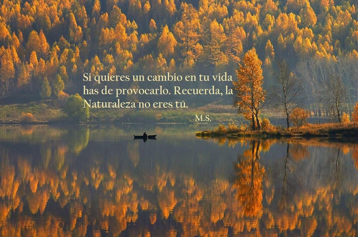 El Blog de María Serralba - #acción = #reacción
