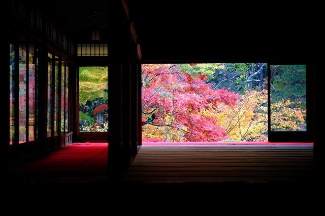 Otoño-Kyoto-Japón