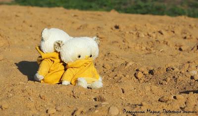 песочный мишка тедди