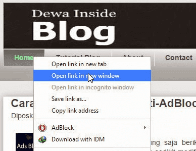 Link Open New Window