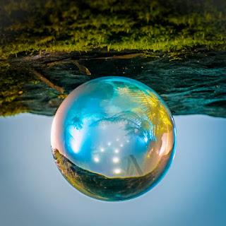 Turning the world upside-down - Geoffrey Dunn - Natureza
