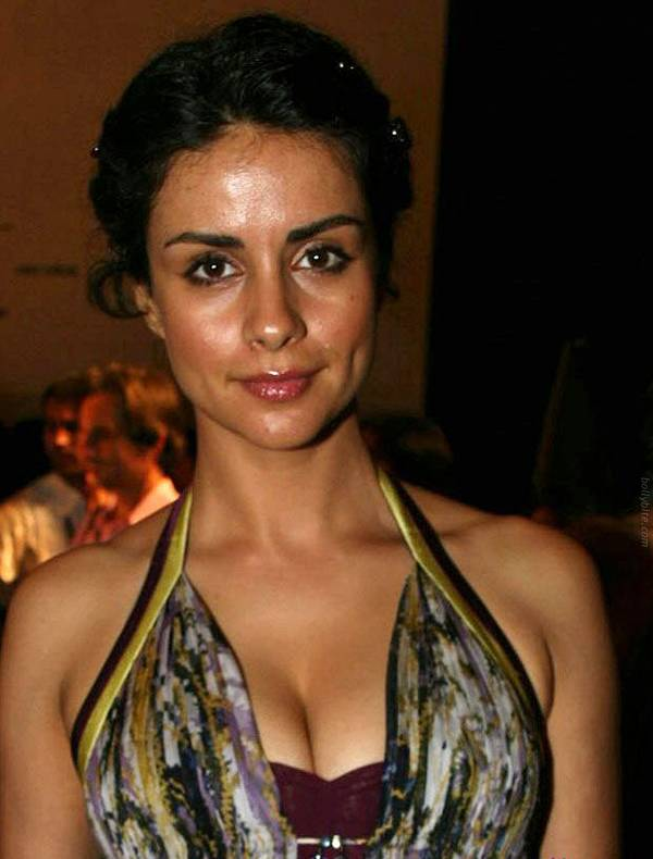 gul panag, bollywood actress, cleavage show, hot photo