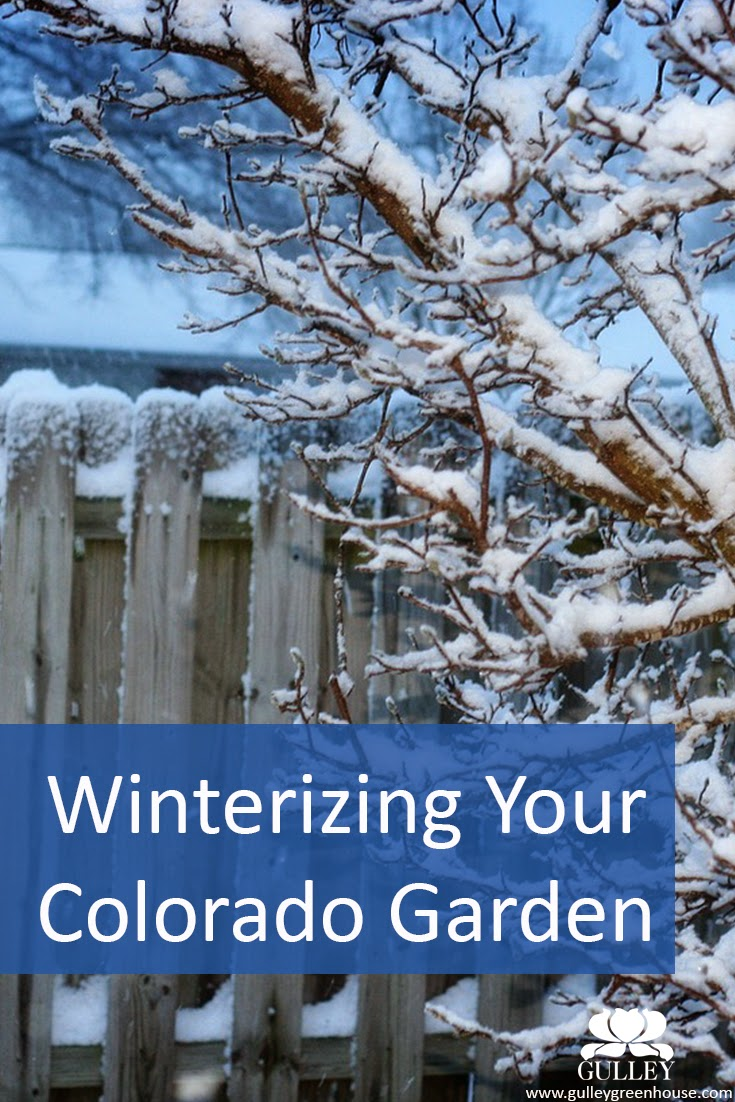 winterizing your colorado garden gulley greenhouse