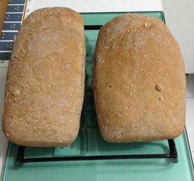 Pão 50% Integral