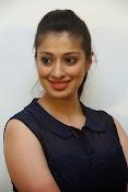 actress Lakshmi rai glam pics-thumbnail-12