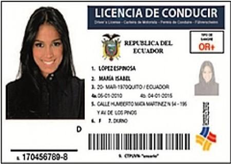 Multas licencias for Department of highway safety and motor vehicles gorenew