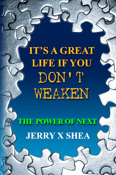 My New Book for 2013 - Available April 27, 2013 as a printed book and eBook.