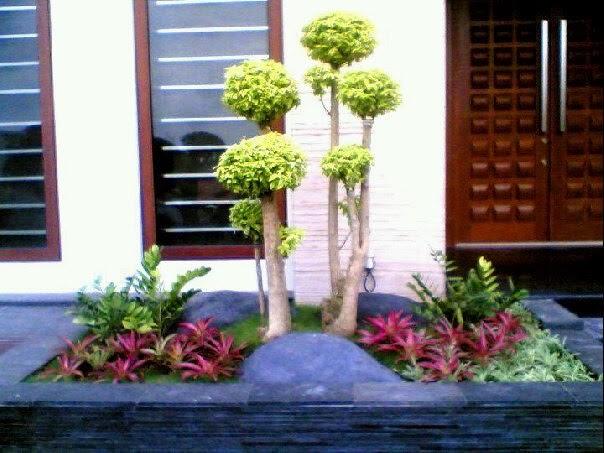 http://rumputtaman6.blogspot.com/2014/02/tukang-taman-minimalis.html