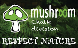 Mushroom Pads