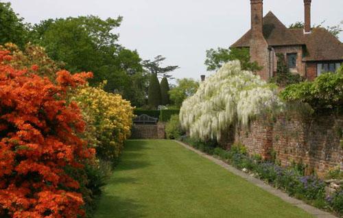 Fondos de jardines hermosos imagui for Coniferas de jardin