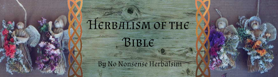 Herbalism of the Bible