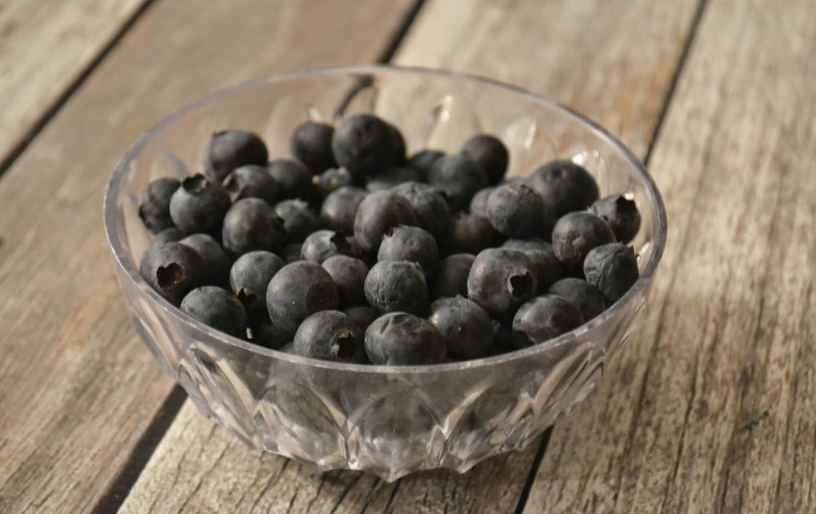 Greek Yogurt Blueberry Muffins #Recipe.  Easy Blueberry Muffin Recipe.  Muffin recipe with Greek Yogurt.  Greek Yogurt Muffins.  Blueberries for snacks.  Healthy snacks.